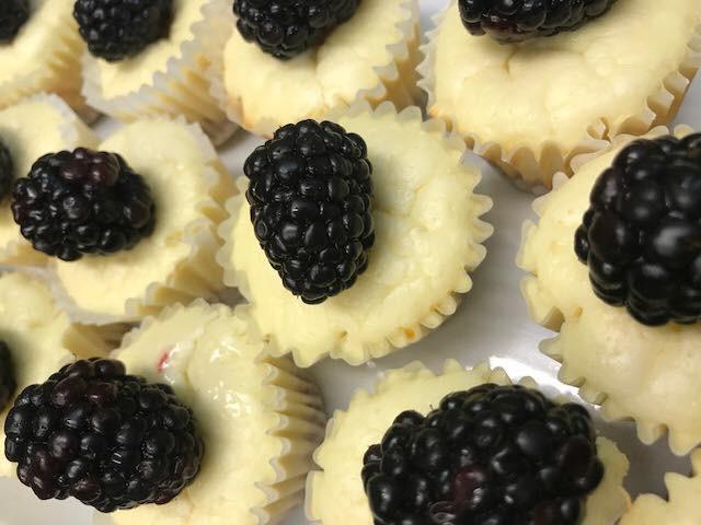 Blackberry Cheesecakes