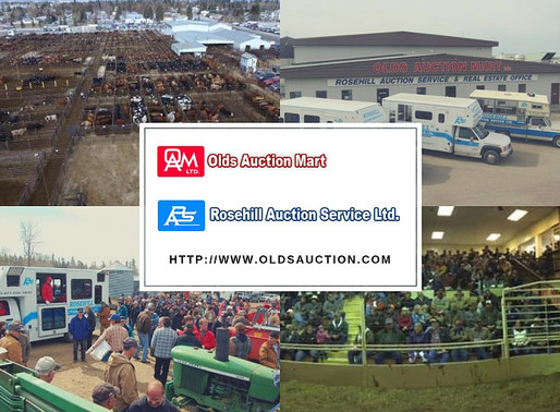 Ad Host - Olds Auction Mart