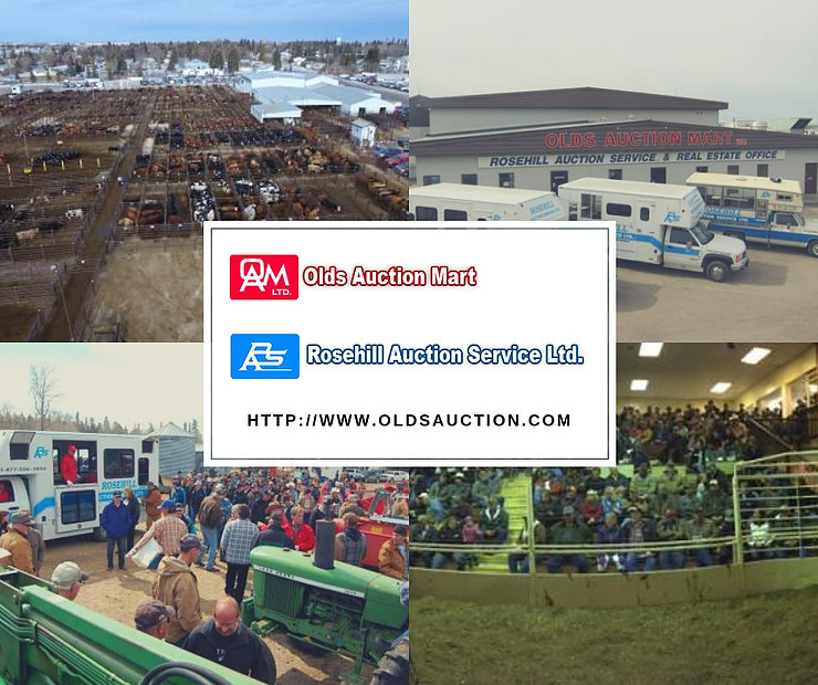 advertising auction marts