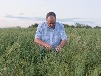 Evaluating forage