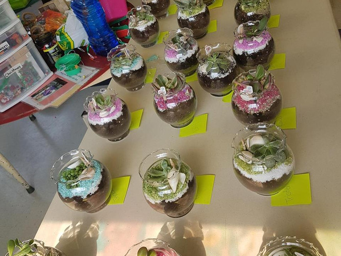 Our Terrarium Class is always a big hit with kids.