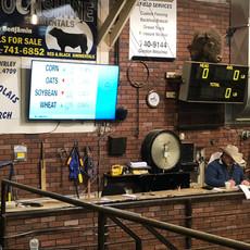 Stettler Auction Mart Ring