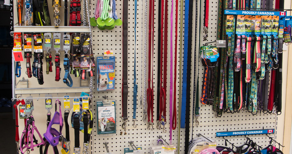 Dog and Cat Supplies
