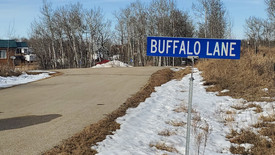 Buffalo Lake residents respond to proposed amendments to public land use bylaw