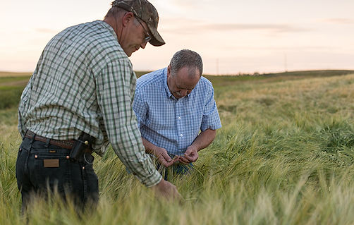 farm-consultant.jpg