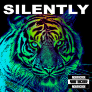 SILENTLY SINGLE COVER