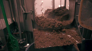 A day in the life of a Brewer