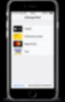 App_Payment.png