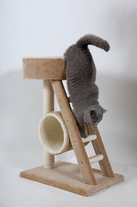 Turret Cat Scratcher