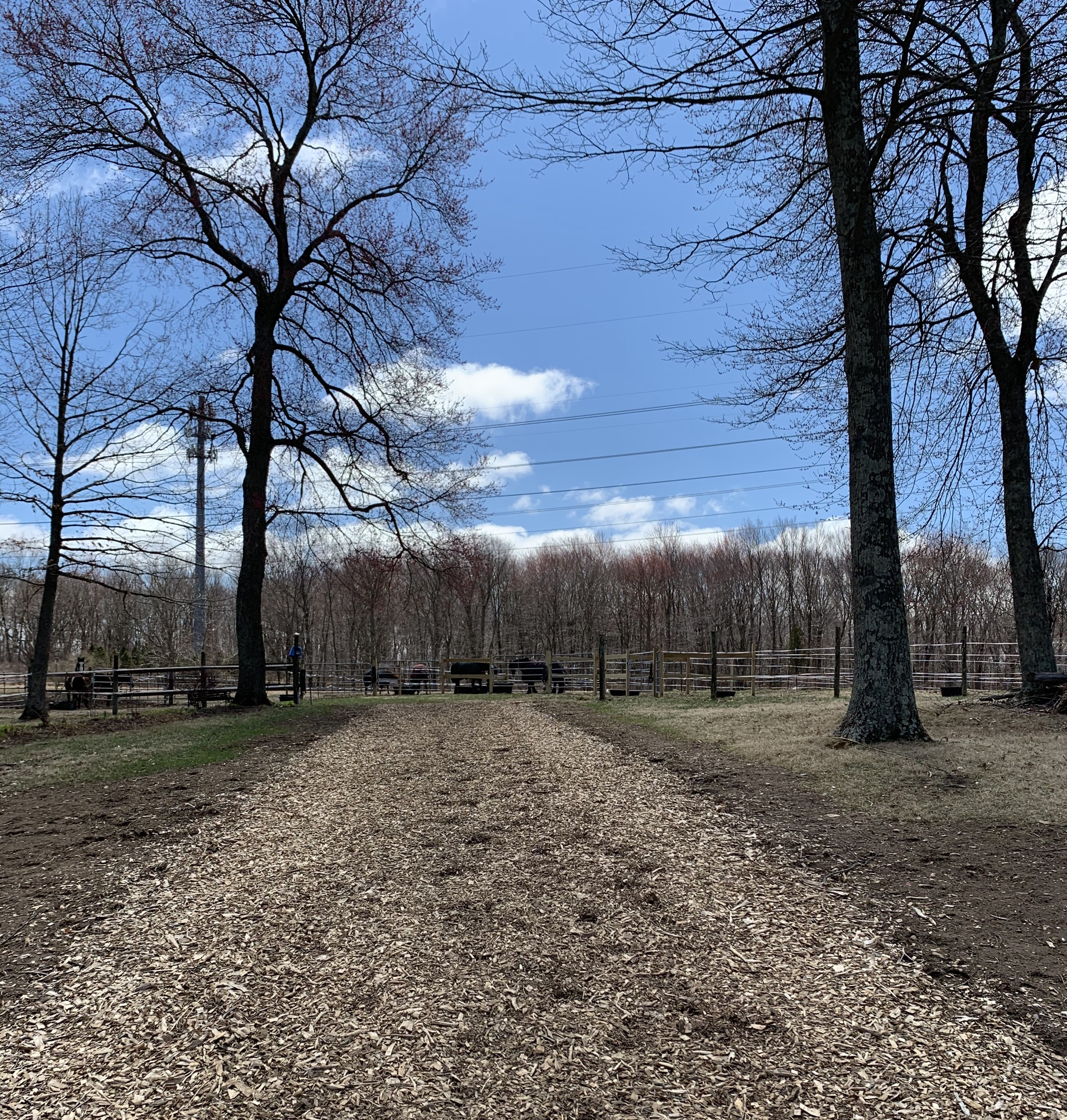 Path to Paddocks