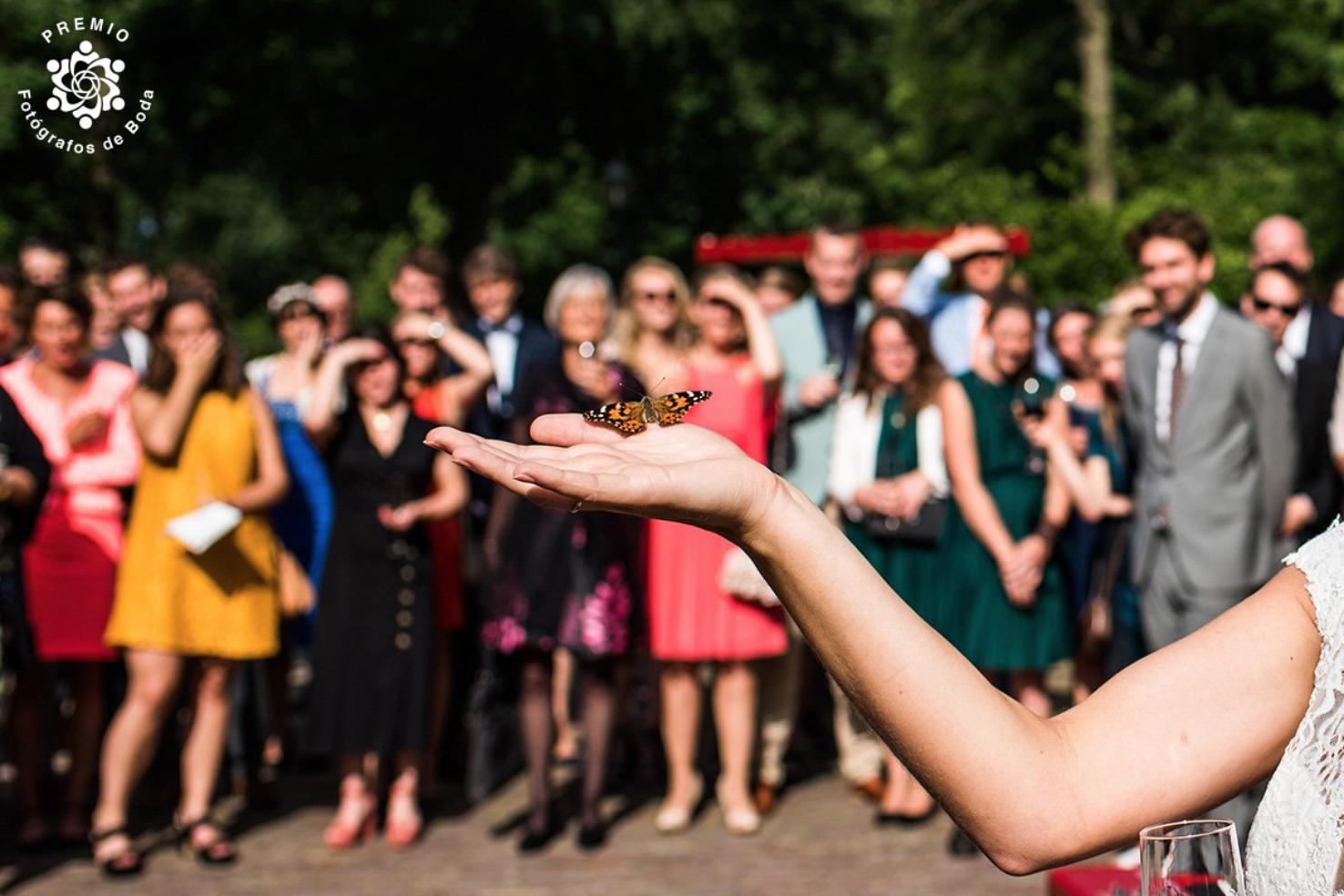 Ongeposeerde trouwfotografie Flevoland