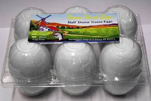 6 Fresh Standard Goose Eggs (half dozen)- US SHIPPING