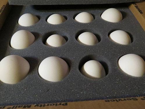 12 Fresh Standard Goose Eggs (1 Dozen)- US SHIPPING