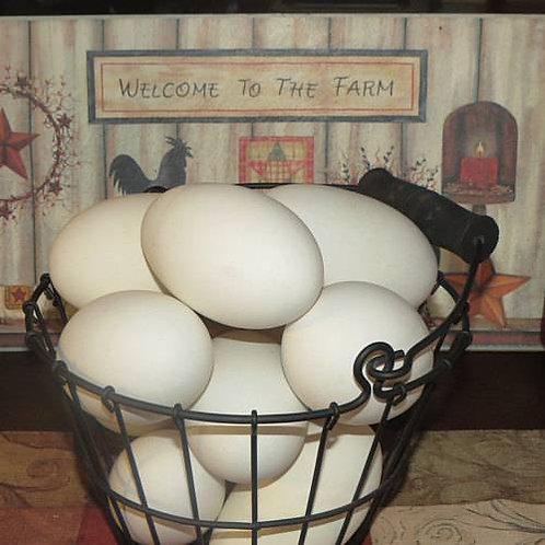 6 Fresh Jumbo Goose Eggs (half dozen)- US SHIPPING