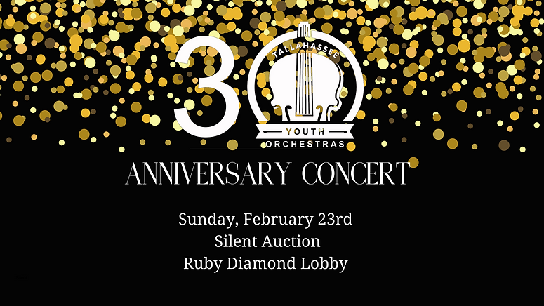 Silent Auction web banner.png