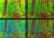 color-paletes.jpg