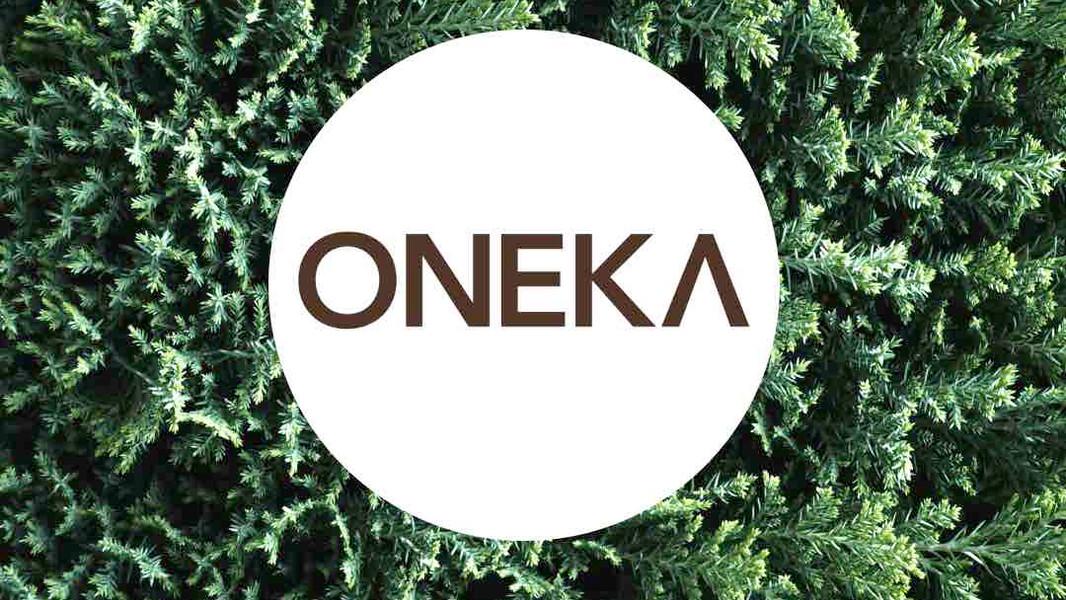 transformation-oneka-elements.jpg