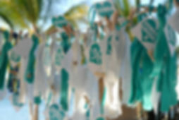 Cozumel Wedding/Event Extras