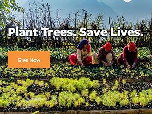 Screenshot_2020-07-02%20Eden%20Reforestation%20Projects_edited.jpg