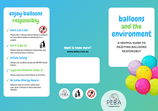 Balloons & The Environment Flyer Side 1.