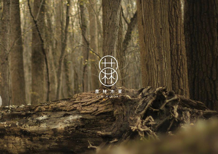 Lumber Branding Design 農林木業品牌設計