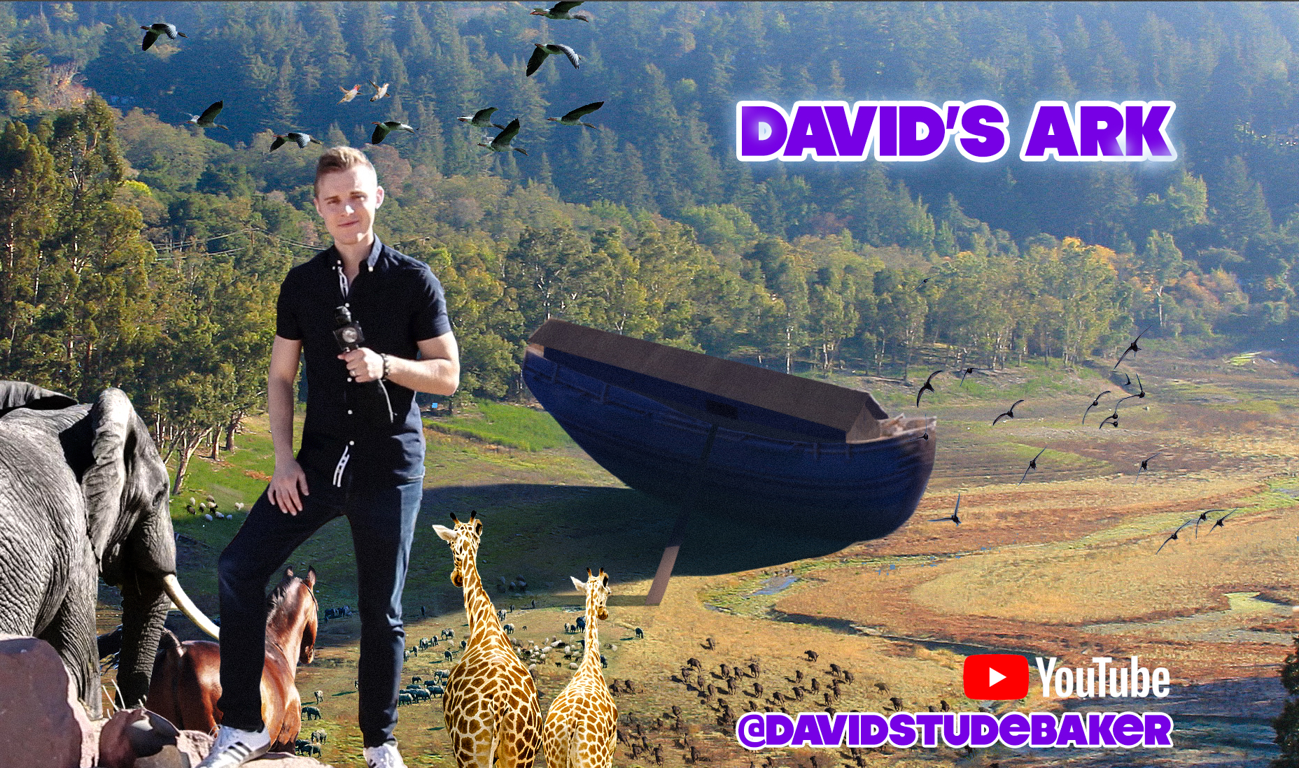 David's Ark official banner