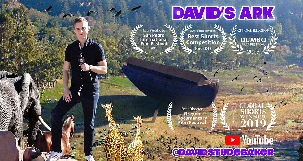 David's Ark official banner with awards.