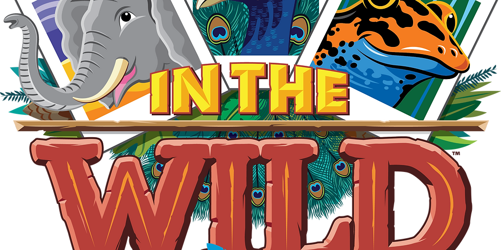 VBS In the Wild Amazing Encounters with Jesus -John 20:31 (1)