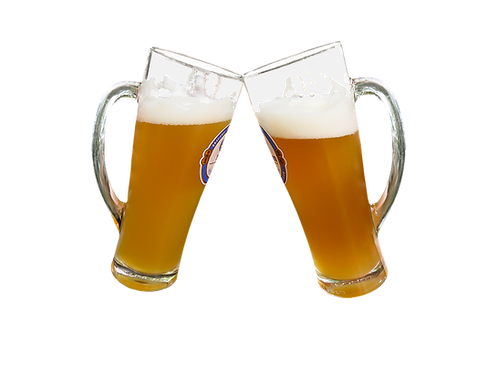 Kit Especial Weissbier