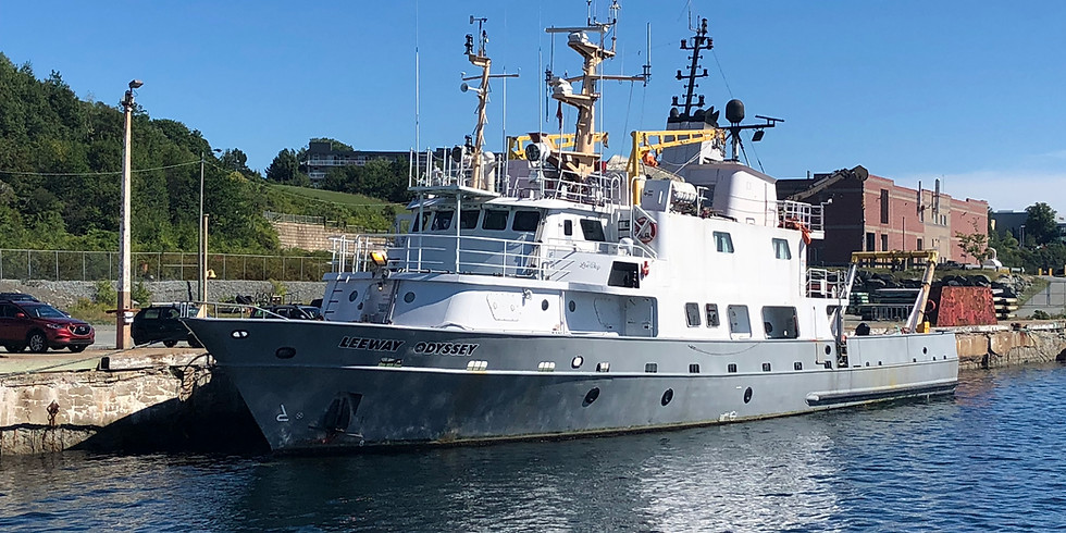 SABLE ISLAND: Ship Expedition