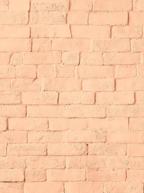 Coral Brick Wall