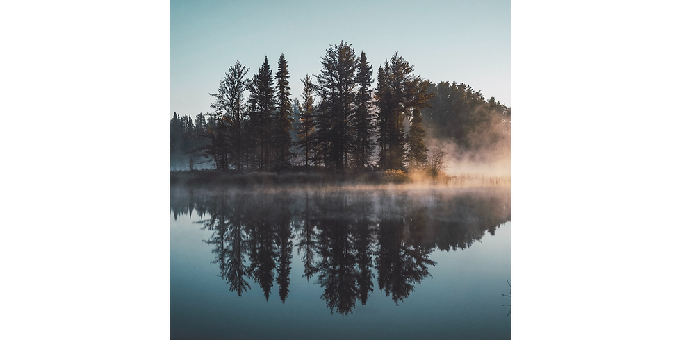 Day 2 Only | Three Half-Day Retreat | Dive into the Brilliance of Silence | July 2-4, 2021