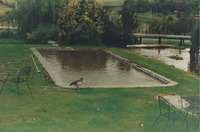 The Hotel Pool, after floods, 2000