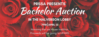 Graphic for the PRSSA 2017 Bachelor Auction