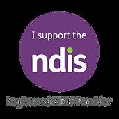 NDIS+logo.png