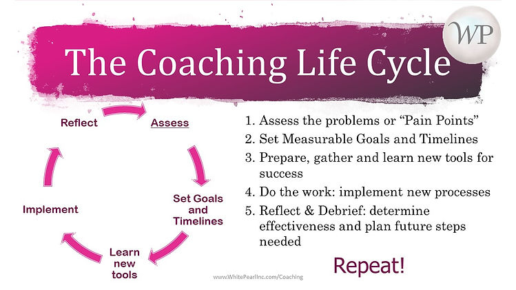 WP Professional Coaching Model-Life Cycl