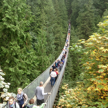 Off the beaten path places to enjoy fall foliage, Vancouver