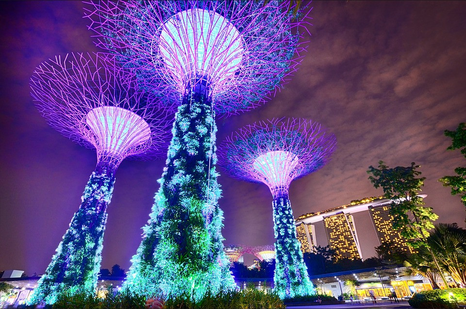 Gardens by the bay, in Singapore