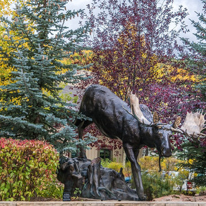 Off the beaten path places to enjoy fall foliage, Vail ...