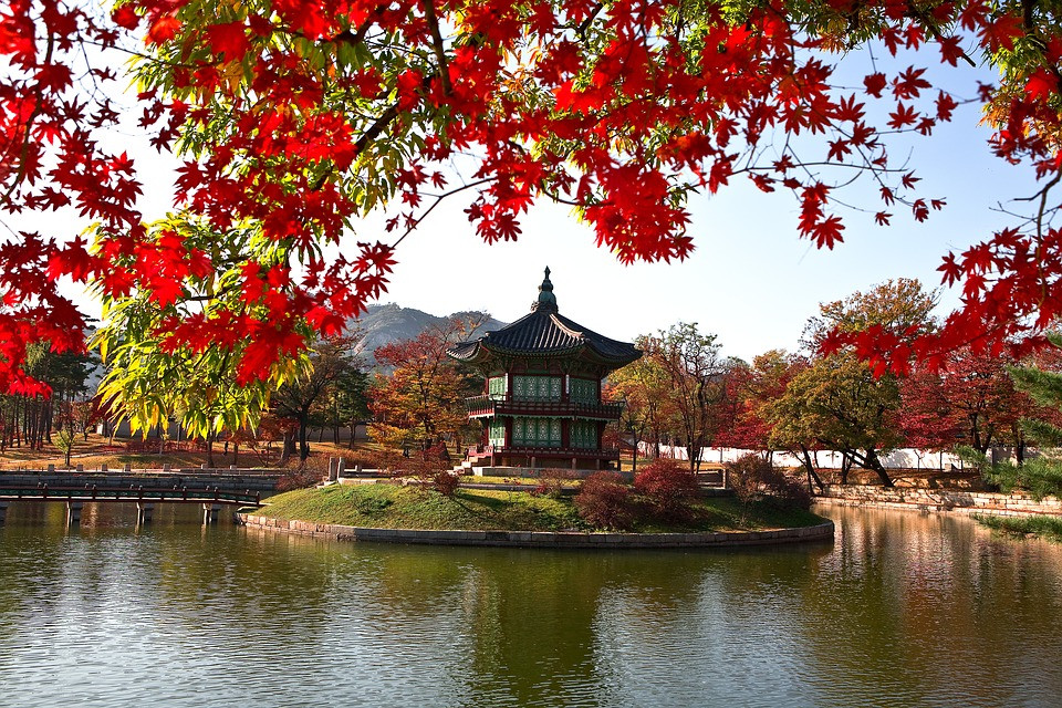 South Korean capital of Seoul, beautiful garden