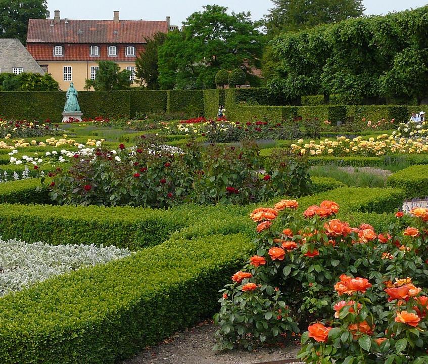 rose-garden-copenhagen