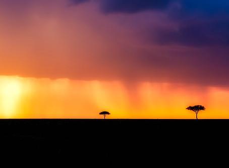 The world famous national parks of Kenya.