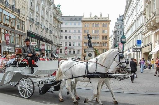 Vienna coach carriage