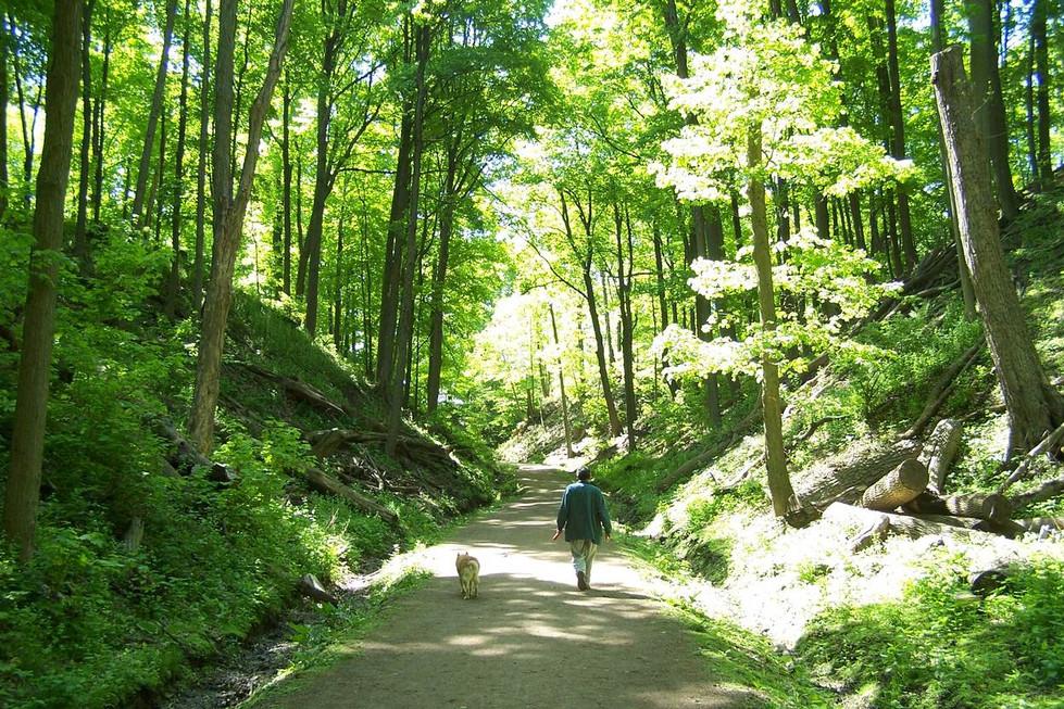 01 Walking Trails.jpg