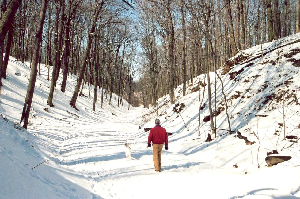 06 Winter Walks.jpg
