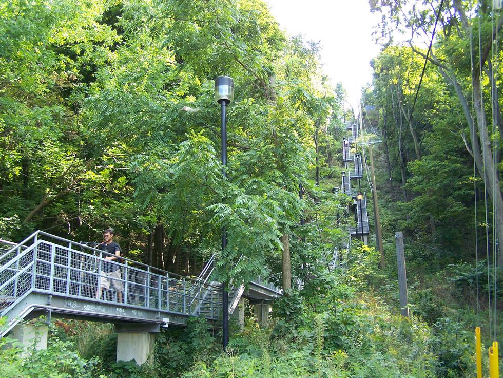 50 Escarpment Stairs.jpg