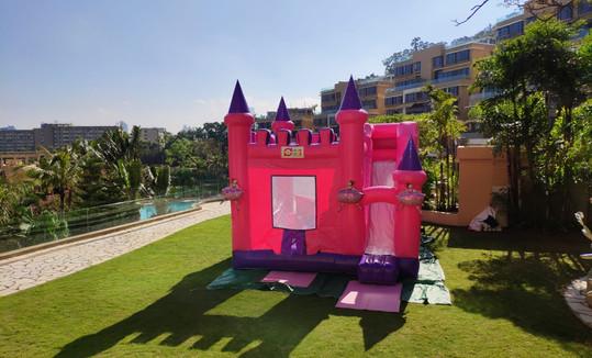 pink castle 9.jpeg