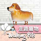 walking pet icon.jpg