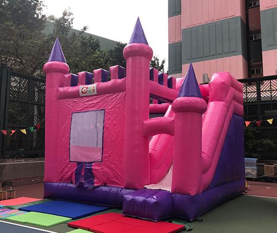 pink castle 1.jpeg