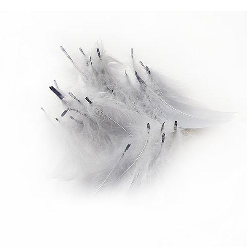 Decorative Feathers - Grey